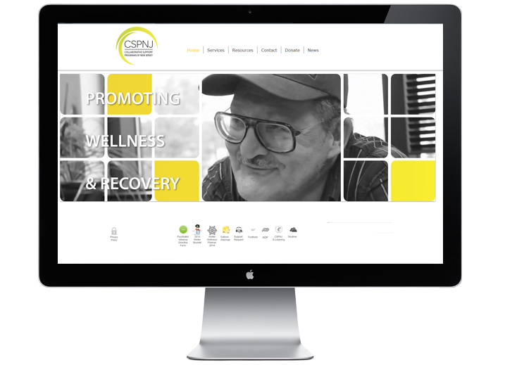 Website_Screen_CSPNJ